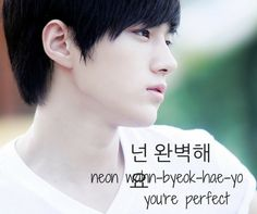 Vingle - You're perfect (Featuring Myungsoo) - K-Idol Flashcards! Learn Korean With K-Entertainment!
