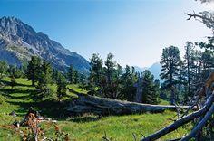 Swiss National Park-Switzerland