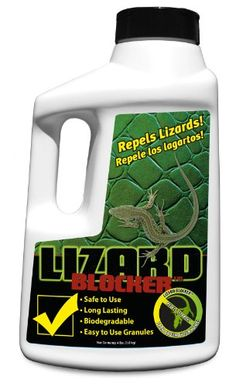 Ridsect Lizard Repellent Does Not Kill Lizards It