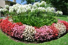 Greenbelt in Eastbluff Front Yard Garden Design, Small Front Yard Landscaping, Garden Yard Ideas, Home Landscaping, Backyard Garden Landscape, Dry Garden, Landscape Plans, Landscape Design, Planting Shrubs