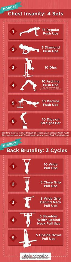Calisthenics Workout Plans Monday Chest Insanity Infographic