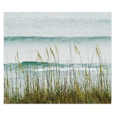 Beach photography, North Carolina, The Long Wait for Summer, fine art... ($36) ❤ liked on Polyvore featuring backgrounds, pictures, beach and ocean