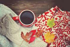 autumn, book, coffee, cold, cozy, fall, hotchocolate, leaves, milk, photo, rain, tea, tree