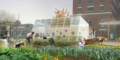 Gallery of Edible Schoolyard / Work AC - 9