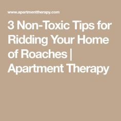 3 Non-Toxic Tips for Ridding Your Home of Roaches | Apartment Therapy