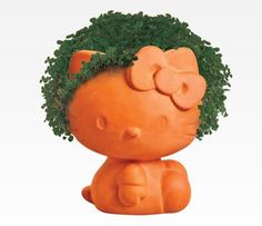 Hello Kitty Chia Pet! I want one. My poor lucky bamboo is finally dying. I need a new houseplant.