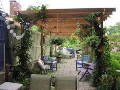 Grape Arbor (50'x10') with a grape vine at each post. Paving bricks placed on bed of sand underneath.