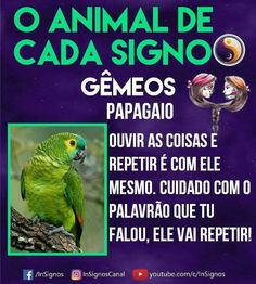 Read Animal De Cada Signo from the story Signos by Sexytaekookv (𝙶𝙰𝚃𝙸𝙽𝙷𝙰) with reads. Mbti, Zodiac Signs, Astrology, Cancer, Reading, Wattpad, Barbie, Pop, Wallpaper