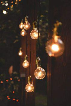 Festoon Lights taken to a new level. Contact us on how we can help make your Festoon light ideas come to light. www.lightworksonline.com.au