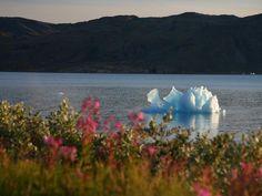 Small Iceberg Moves Down Narsarsuaq Fjord in Greenland