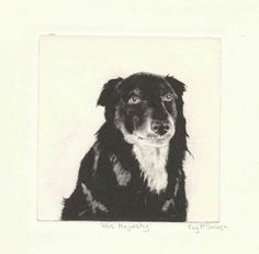 'His Majesty' Drypoint Etching by Kay McDonagh.  Original prints available.