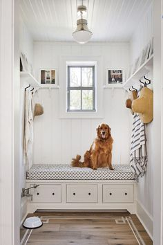 White bead board farmhouse style mud room with open shelving and hooks and a built-in bench with cushion. Designed by Heather Chadduck Interiors for the Southern Living Idea House Southern Living Homes, Country Homes, Neutral Paint Colors, Up House, River House, House Floor, Built In Bench, Living Room Bedroom, Mudroom