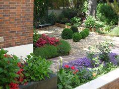 buis boule, aubriète, arums  C'est un petit jardin devant la maison d'environ 100 m² exposé Sud-ouest avec un grand sapin vert, les branches basses ont été coupées afin de planter des rhododendrons, hortensias, pivoines, érables, buis pour l'effet japonisant. -