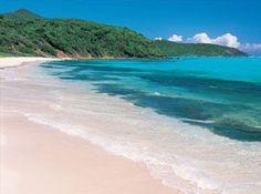 beachy beachy beachy