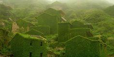 Groene spookstad: natuur overwoekert een compleet dorp in China