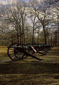 with Ann Patchett in This is the Story of a Happy Marriage American Civil War, American History, Shiloh Battlefield, Battle Of Shiloh, Tennessee Waltz, Civil War Photos, Down South, Happy Marriage, Cannon
