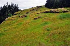 Horse Rock Ridge, near Eugene
