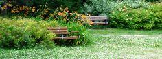 Brookdale Park Woburn