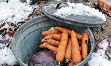 Es gibt kaum etwas besseres, um Gemüse über den Winter zu lagern: der Erdkeller. Viel ist für den Bau des nicht nötig, doch der Profit ist enorm.