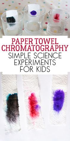 Paper Towel Chromatography Experiment to Do with Kids is part of Kids Crafts Science Simple - Investigate chromatography with this simple science experiment for kids separating the colours found in washable markers using paper towels Easy Science Experiments, Stem Science, Science Activities For Kids, Preschool Activities, Science Ideas, Paper Towel Crafts, Paper Towels, Chromatography For Kids, Stem For Kids