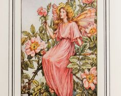 The Wild Rose Fairy - Vintage (1930s) Flower Fairy Print by Cicely Mary Barker