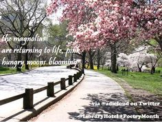 Have you joined the Haiku Challenge? Use these tweets as inspiration and submit your own for a chance to win a two night stay in the Poetry Room!   Contest details: http://on.fb.me/Z0CWUR