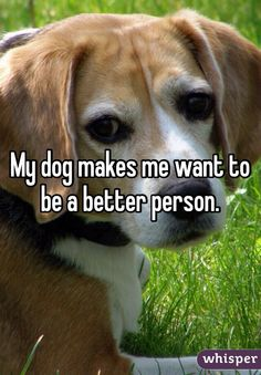 """""""My dog makes me want to be a better person."""""""