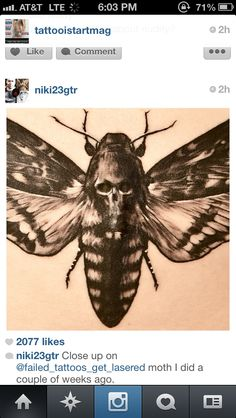 Sick moth tattoo I saw on instagram