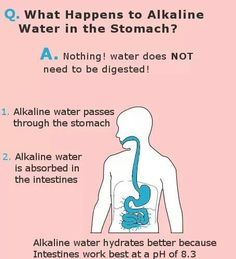 The importance of drinking Alkaline water The Benefits of Drinking Ionized Alkaline Water Kangen Water Change your water-Change your life! Kangen Water Benefits, Alkaline Water Benefits, Health Benefits, Health Tips, What Is Alkaline Water, Drinking Alkaline Water, Alkaline Diet Plan, Alkaline Diet Recipes, Kangen Water Machine