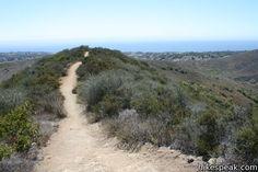 Zuma Canyon Ocean View & Canyon View Trails | Malibu | Hikespeak