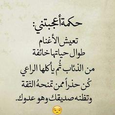 حاميها حراميها Proverbs Quotes, Quran Quotes, Wisdom Quotes, Life Quotes, Story Quotes, Book Quotes, Words Quotes, Sayings, Insightful Quotes