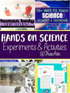 Bring science to life with these fun science experiments and activities from True Aim this summer! You can even do these science activities during the summer and not just during the school year! Try these out with your kids! Science Activities For Kids, Cool Science Experiments, Teaching Science, Hands On Activities, Science Projects, Life Science, Weird Science, Sensory Activities, Preschool Ideas