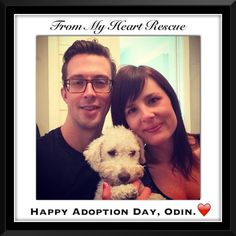 #Please ❤️+ #Pin #FromMyHeartRescue #RescueWithoutBorders #SavingOneDogAtaTime ~ #Happy #Adoption #Day #Odin *Many thanks to Sam, Linda, Larisa, Christa & Kim, for all their hard work behind the scenes. *Thank you for your support.❤️ *Info/Foster, Adoption/PayPal/e-transfer & PayPal: frommyheartrescue@hotmail.com *Vets: Brock St. Animal Hospital/FMHR 905-430-2644 *Fundraising/Volunteering: FMHRfundraising@hotmail.com    *www.frommyheartrescue.com  *Find Us: Petfinder,FB, Twitter, IG, YT…