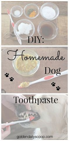 DIY: Homemade Dog Toothpaste #diy #dogtoothpaste #homemade