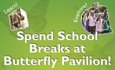 Butterfly Pavilion | Denver Family Activities | Things to do with children