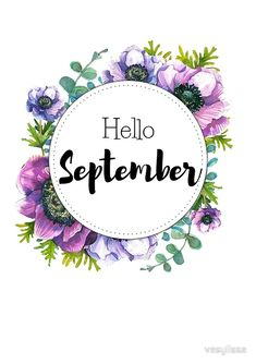 'Hello September - monthly cover for planners, bullet journals' Canvas Print by vasylissa Hello September Quotes, Hallo September, Welcome September, Hello August, Planner Stickers, Planner Pages, Journal D'inspiration, September Pictures, September Wallpaper