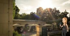 New on my Pinterest: Hochzeitsfotograf Berlin...