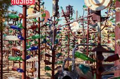 Elmer's Bottle Tree Ranch — Oro Grande, California | 17 Incredible Things On Route 66 You Have To See To Believe