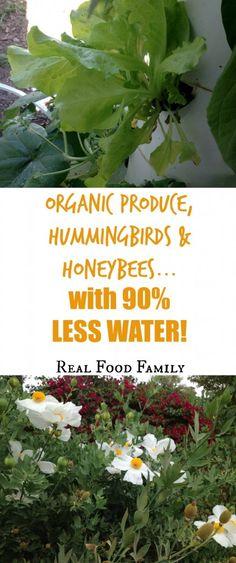 organic produce, hum