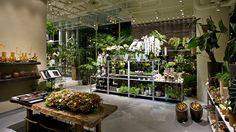 第一園芸本店 - Google 検索