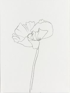 tremendousandsonorouswords:  Ellsworth Kelly, Poppy, 2010
