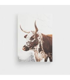 Nguni Canvas - Nguni Canvas - Nguni canvas with sturdy wooden frame.Nguni Head Canvas - Nguni canvas with sturdy wooden frame. Picture Tag, All Pictures, Wooden Frames, Moose Art, Canvas Art, African, Wall Art, Sky, Wood Frames