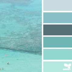 today's inspiration image for { waikiki blues } is by @thebungalow22 ... thank you for another incredible #SeedsColor photo share, Steph!