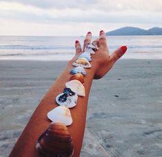 Shells along arm;beach days with summer waves