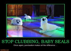 Those party animals!  Google Image Result for http://www.motifake.com/image/demotivational-poster/1202/stop-clubbing-baby-seals-stop-clubbing-baby-seals-punctuatio-demotivational-posters-1328522015.jpg