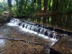 Waterfall (Thornton-le-Dale)
