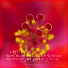 The Lord your God turned the curse into a blessing for you, because the Lord your God loves you. Deu 23:5. <3