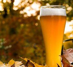 Descubre los beneficios de la levadura de cerveza en nuestro Facebook: https://www.facebook.com/HomeXXI?ref=hl