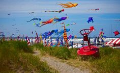 A lazy summer day at the Kite Festival at Long Beach, Washington state. Long Beach Washington, Washington State, Kite Designs, Beach Place, Kite Flying, Night Circus, Peaceful Places, Us Beaches, Project 3