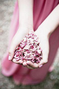 Throwing rice alternatives at a wedding - Potpourri Biodegradable Confetti, Biodegradable Products, Rice Alternatives, Animal Eating, Confetti Bars, Uk Bride, Big Fat Indian Wedding, Wedding Confetti, Rose Petals